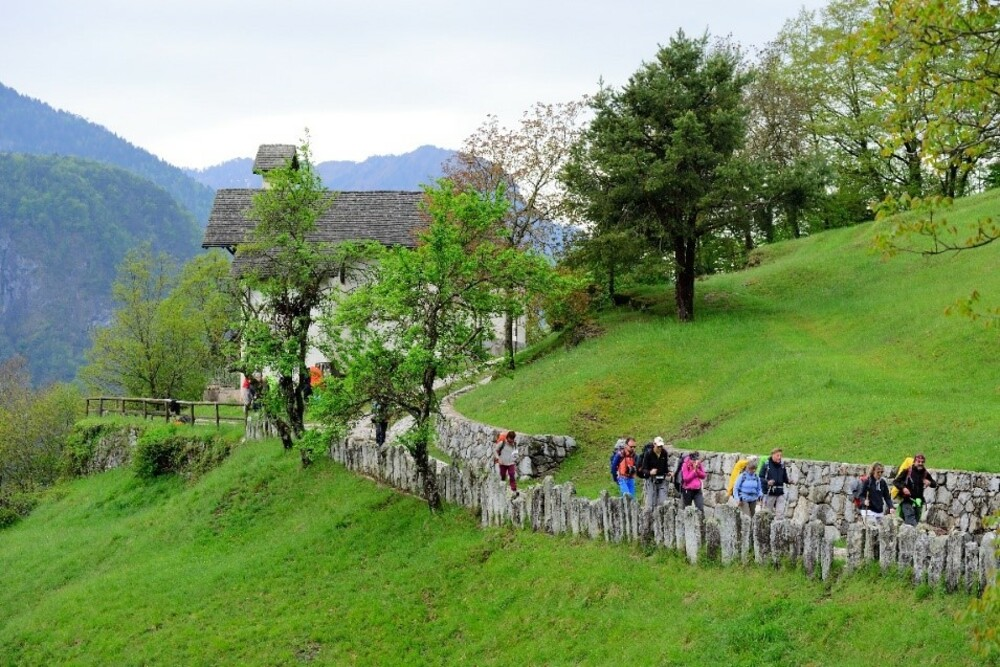 Dolomiti di Brenta - Cammino di San Vili